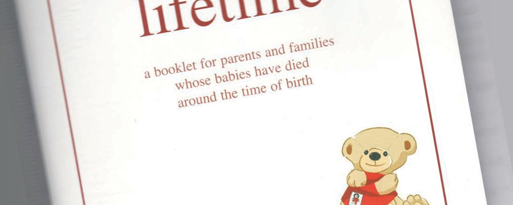 A Little Lifetime – Book for Parents & Families