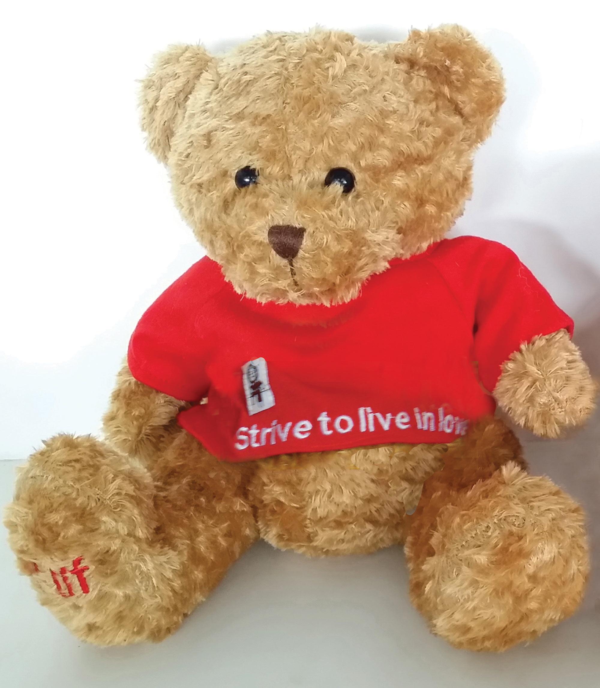 A Little Lifetime Foundation Teddy